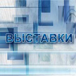 Выставки Мильково